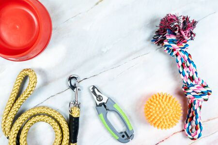 Pet leashes, nail scissors with toys. Pet accessories concept