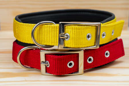 Pet collars stack for pet on wooden background 免版税图像
