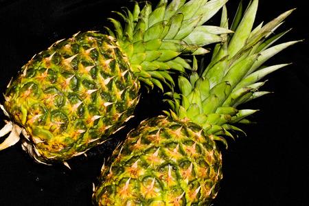 Las Vegas, NV, Verenigde Staten - 19 februari 2016: Handige ananas uitboren hulpmiddel creëert verse ananas ringen gemakkelijk en snel.
