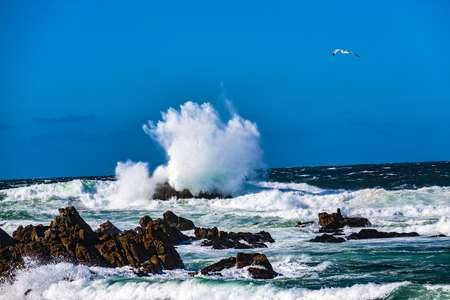 Wave action on a clear and blustery day produces water explosions against the rocky outcroppings, Pismo Beach, California
