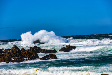Wave action on a clear and blustery day produces water explosions against the rocky outcroppings, Pebble Beach, California
