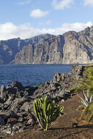 the coast of Los Gigantos - Tenerife - Spain