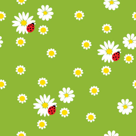 Chamomile flowers with a  ladybirds on a green background Vector