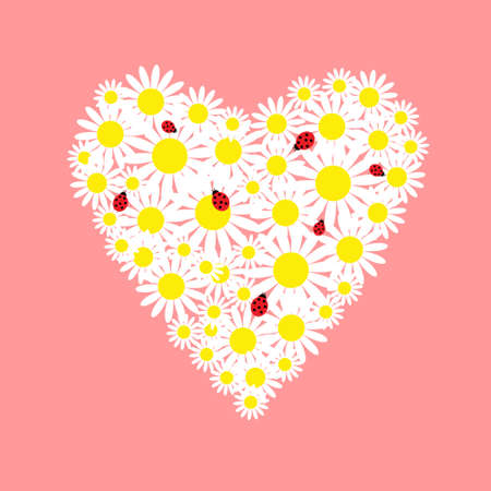 Heart of daisies with a red ladybugs  Vector