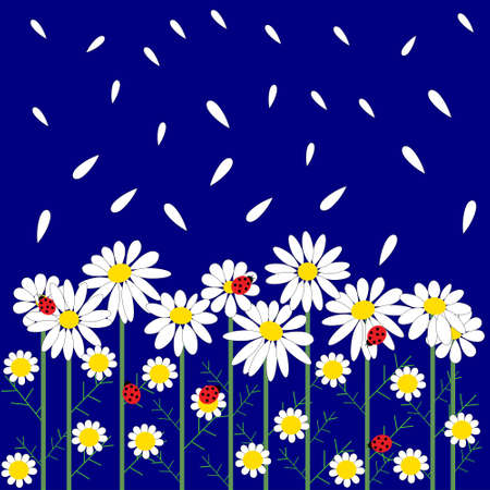 daisy flower: A flower seamless pattern with daisies Illustration