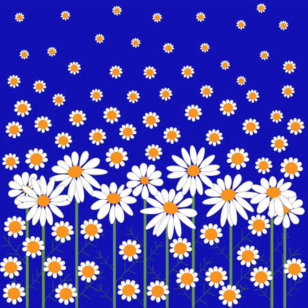 Card with a lots of daisies Vector