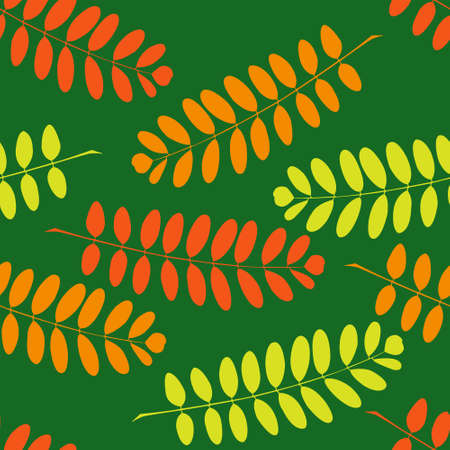 Seamless pattern with branches of a acacia