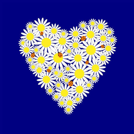 Background with a hearts of the daisies Vector