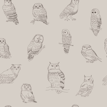 Stylish seamless pattern of a cartoon owls strokes