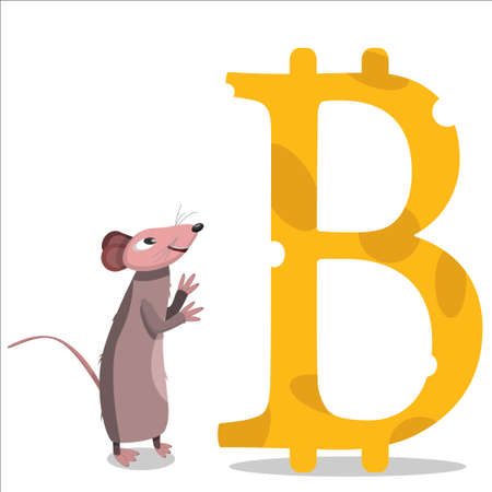 Mouse looking at cheese bitcoin. Mouse admiring bitcoin. Crypto-currency. Vector Illustration