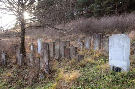 Staryi Sambir, Ukraine - NOV 2019: Old Jewish cemetery in Staryi Sambir, Lviv region, Ukraine.