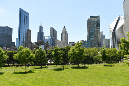 Downtown Chicago view from Grant park