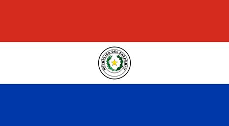 Flag of Paraguay. Republic of Paraguay flag