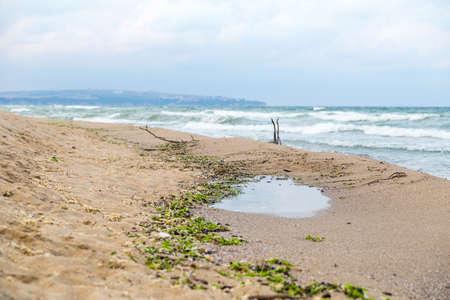 environmental issue: Environmental issue - muddied seashore ocean, natural mud and algae stick to the shore