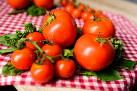Many tomatoes are placed on a plaid tablecloth. Stock Photo