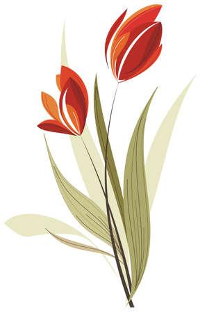 tulipan: Tulipan Ilustracja