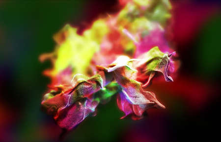 fume: Particles of colored fume in air, 3d illustration