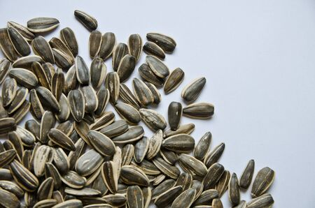 sunflower seeds with with background