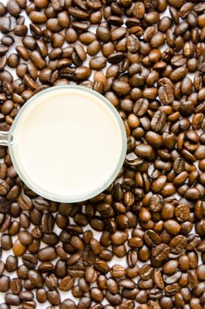 Kaffee Milch auf den Kaffee Samen