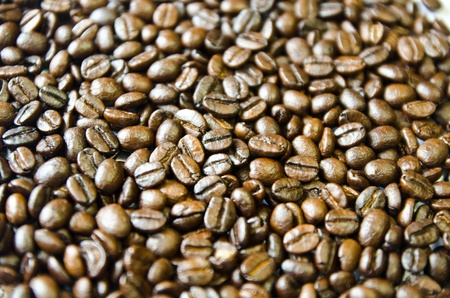 Coffee seed background  Stock Photo