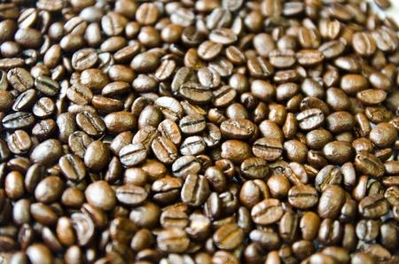 Kaffee Samen Hintergrund