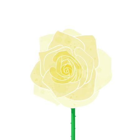 rosas amarillas: Amarillo vector rosa
