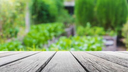 Empty wood table top and blurred green tree and vegetable in agricultural farms. background - can used for display or montage your products.