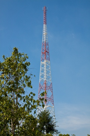 mast cell: Receiving antenna