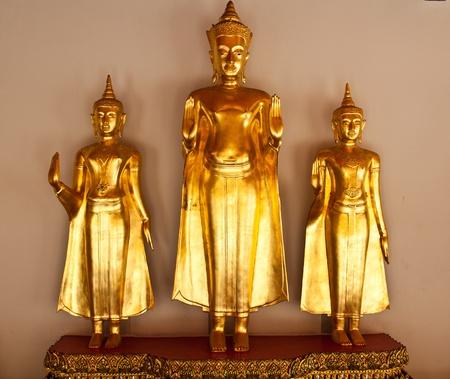 transcendental: Buddha statue