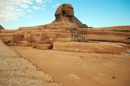 Egypt. Cairo. Giza. View of the fully unearthed Sphinx during the restoration works.