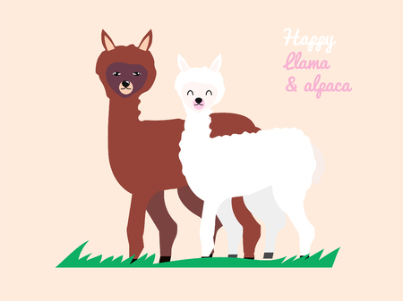 llama and alpaca sweet couple