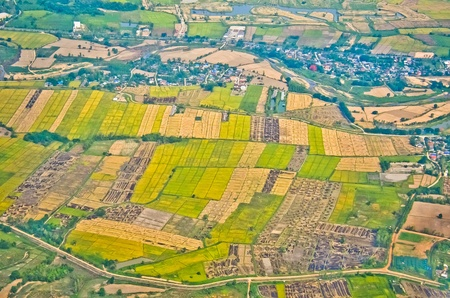 Bird eyes view agriculture in Thailand photo