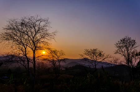 riverside trees: The sunset over the mountains, with trees silhouetted against the sky