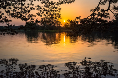 Silhouette of forest at sunset with reflection on water at Phutthamonthon in Thailand