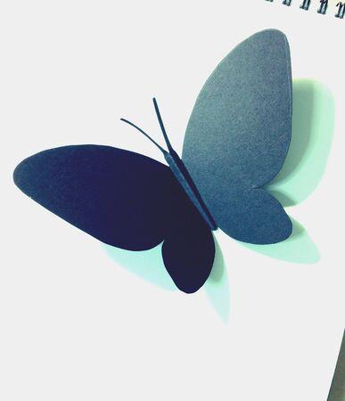 papercraft: Papercraft butterfly