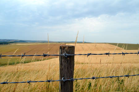Barbed wire fence along English crop fields  photo