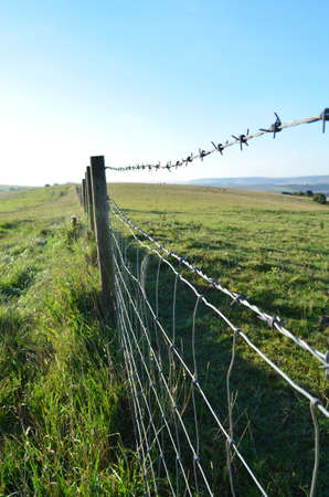 fencing wire: Barbed wire fence in the English countryside