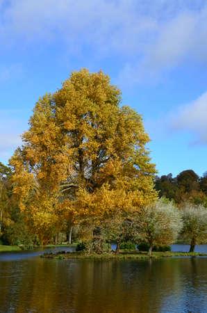 stourhead: Vibrant Autumnal colors in England. Stock Photo
