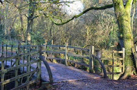 acre: Wooden bridge crossing stream in one hundred acre wood in England
