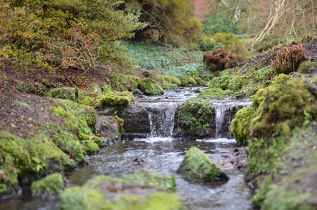 west sussex: Small waterfall and stream flowing through the West Sussex countryside in England,