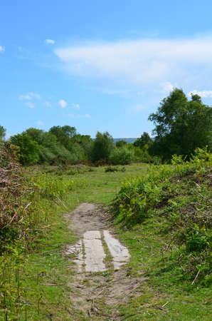 sussex: Chailey common heathland in Sussex England.