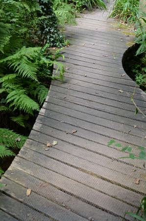 Curved wood jetty.