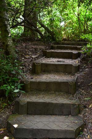 Garden steps. Banco de Imagens
