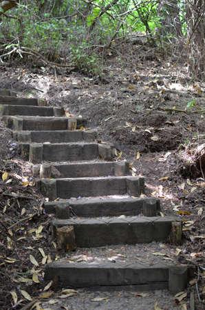 Rustic steps in a woodland setting. Banco de Imagens