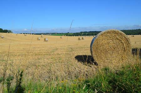 Hay bales in on British farmland.