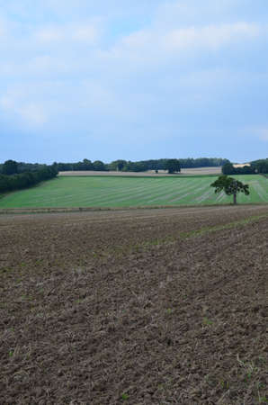 West Sussex farm fields after the Summer harvest.