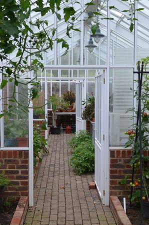 Interior of a Victorian garden green house. Banco de Imagens
