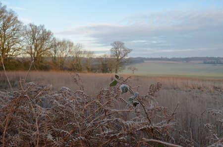 British countryside in Winter. Banco de Imagens