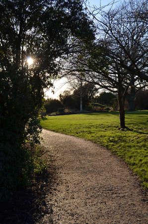 Gravel garden path heading for the sun.
