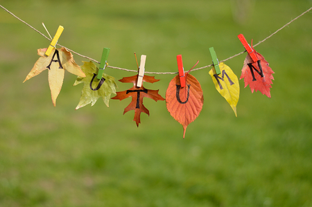 string with leaves and letters spelling: AUTUMN over meadow Stock Photo